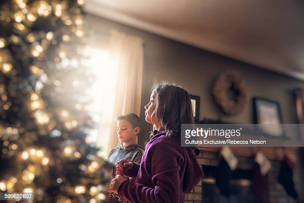 Side view of children in living room decorating Christmas tree