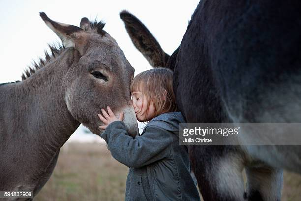 side view of cute girl kissing donkey on field - donkey stock pictures, royalty-free photos & images