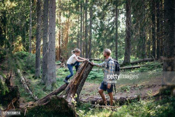 side view of daughter climbing log by father in forest - 北ヨーロッパ ストックフォトと画像