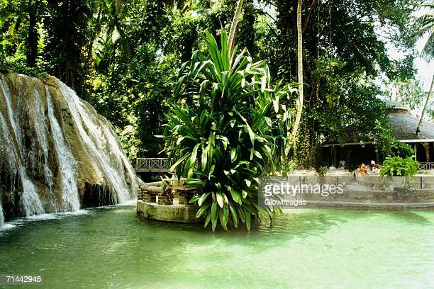 Side view of Dunn's River Falls, Jamaica