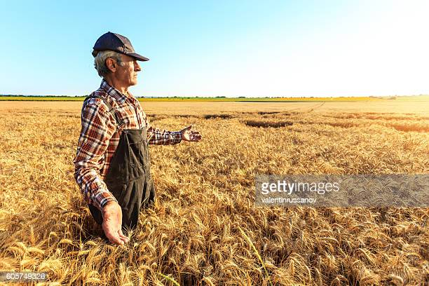 side view of farmer enjoying successful harvest - dungarees stock pictures, royalty-free photos & images