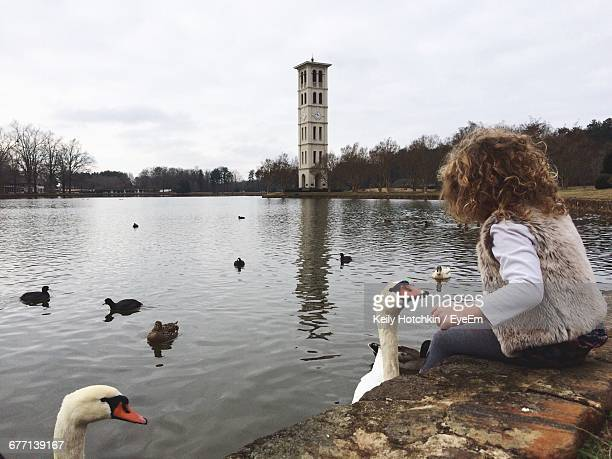 Side View Of Girl Playing With Swans While Sitting By Lake