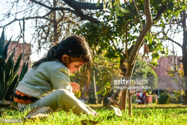 side view of girl sitting on field,chandigarh,india - chandigarh stock pictures, royalty-free photos & images