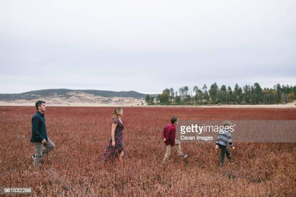 side view of happy family walking on grassy field against sky - julian california stock photos and pictures