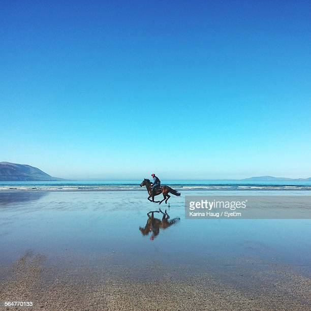 Side View Of Horse Ride On Beach Against Blue Sky