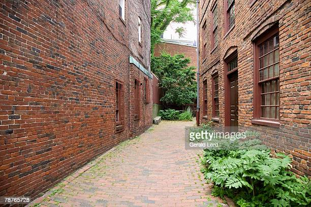 side view of houses beside a brick footpath - pedestrian walkway stock pictures, royalty-free photos & images