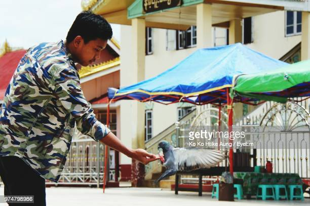 side view of man feeding pigeon against building - ko ko htike aung stock pictures, royalty-free photos & images