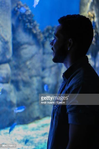 Side View Of Man Standing In Aquarium