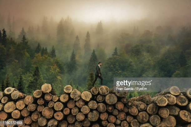 side view of man walking on woodpile in forest during foggy weather - log stock pictures, royalty-free photos & images