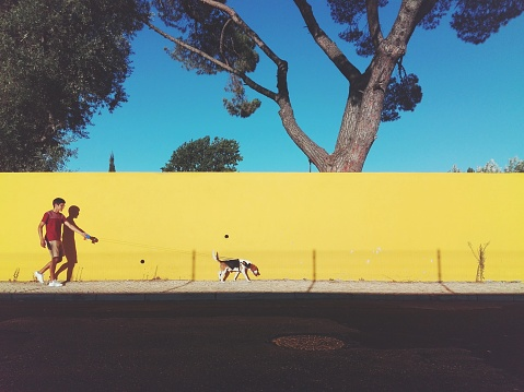 Side View Of Man Walking With Dog Against Clear Blue Sky - gettyimageskorea