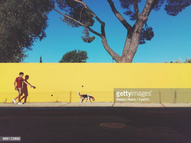 side view of man walking with dog against clear blue sky - pavement stock pictures, royalty-free photos & images
