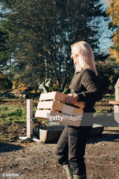 Side view of mature woman carrying crate full of vegetables at farmers market