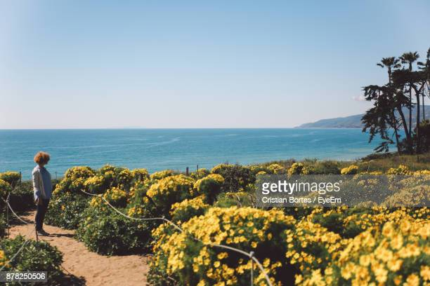 Side View Of Mid Adult Woman Standing By Yellow Flowers Against Sea