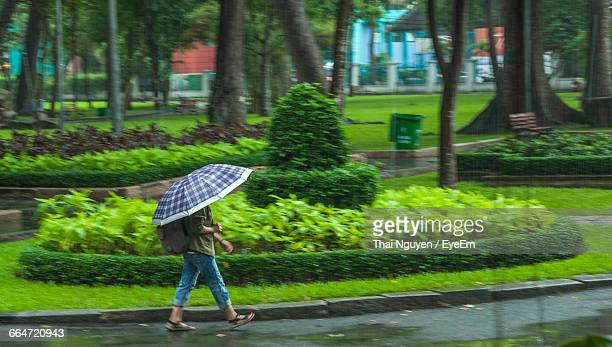 Side View Of Person Holding Umbrella And Walking On Wet Street During Monsoon