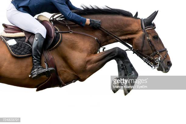 side view of person riding horse in competition - cheval photos et images de collection