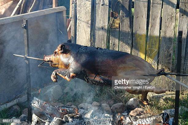 Side View Of Pork Getting Roasted