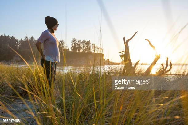 side view of pregnant woman looking away while standing at sunset bay state park against sky - sunset bay state park stock pictures, royalty-free photos & images