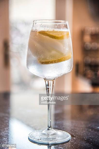 Side view of refreshing gin and tonic with ice and lemon