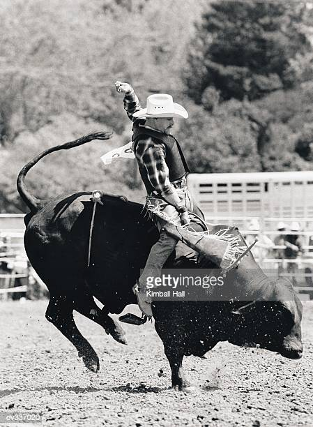 Side view of rider hanging on to bucking bull
