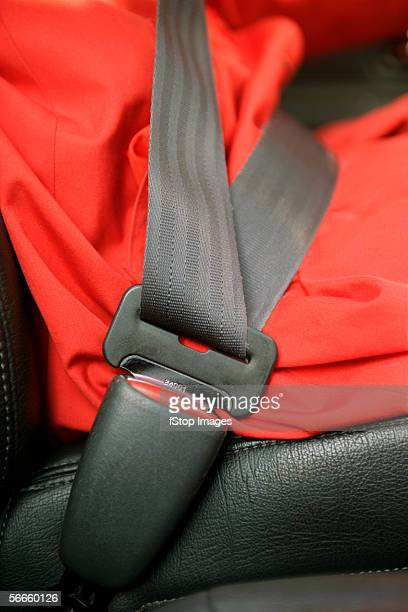 Side view of seat belt