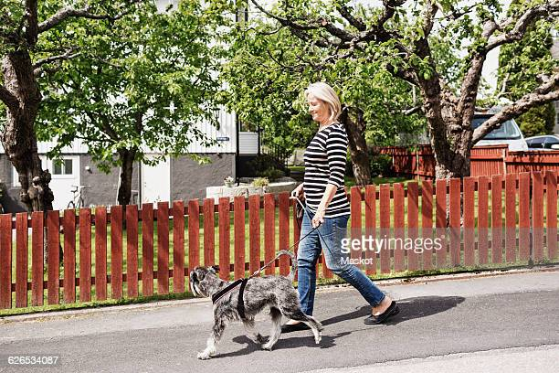 Side view of senior woman walking with dog on street