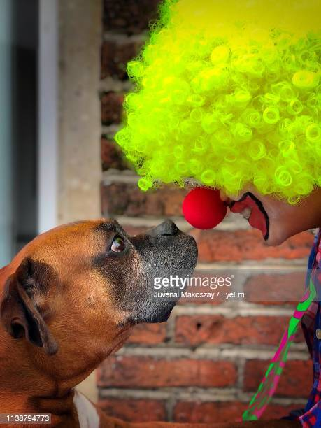Side View Of Smiling Clown Looking At Dog During Halloween