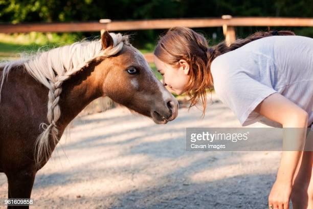 side view of teenage girl playing with pony on field - pony play bildbanksfoton och bilder