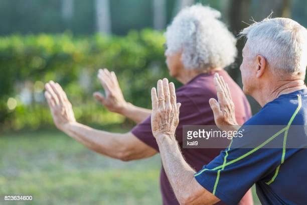 Vue latérale des deux hommes âgés, pratiquant de tai chi