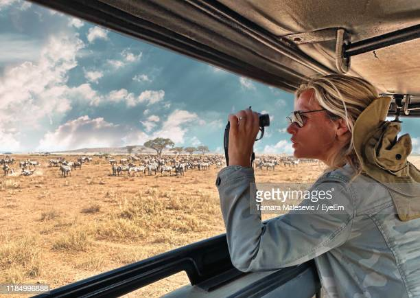 side view of woman doing safari - safari stock pictures, royalty-free photos & images