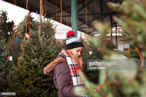 Side view of woman looking at Christmas trees