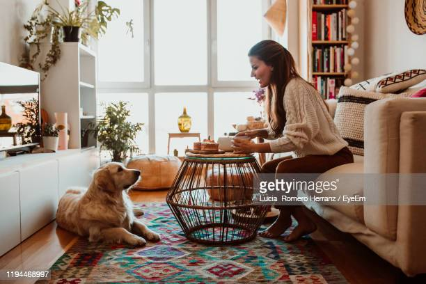 side view of woman looking at dog while sitting on sofa - cat family stock pictures, royalty-free photos & images