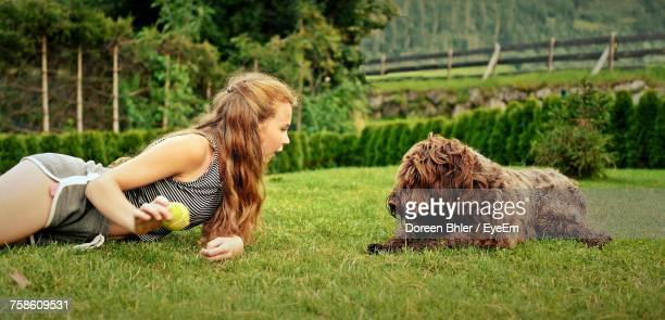 side view of woman lying on grass while playing with pudelpointer - hairy girl stock pictures, royalty-free photos & images