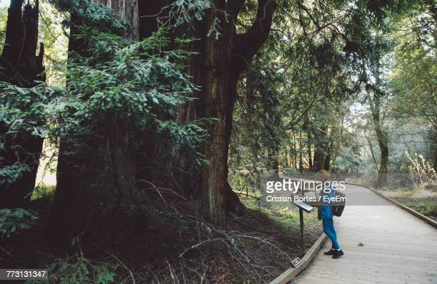 Side View Of Woman Standing On Footpath Against Trees At Forest