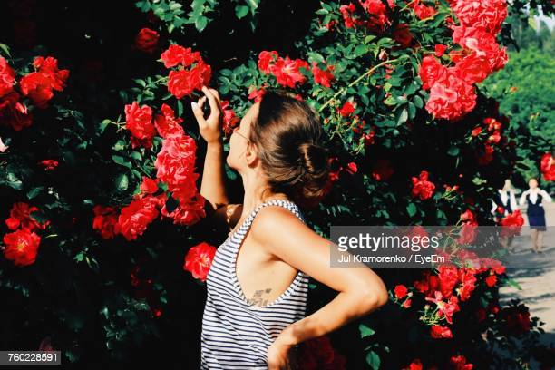 side view of woman touching red flowers blooming outdoors - jul photos et images de collection