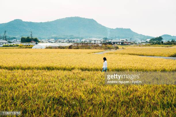 side view of woman walking on field against sky - satoyama scenery stock pictures, royalty-free photos & images