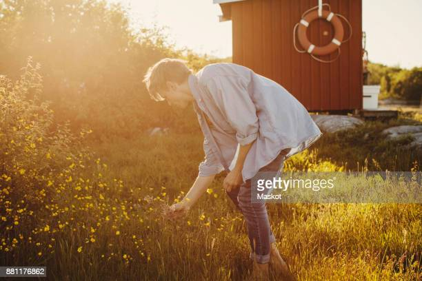 Side view of young man looking at flowers on sunny day