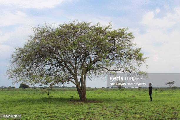 Side View Of Young Man Looking At Tree While Standing On Grassy Field Against Cloudy Sky