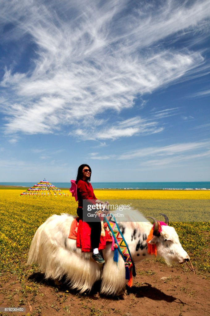 Side View Of Young Woman Riding Yak On Field Against Sky : Stock Photo