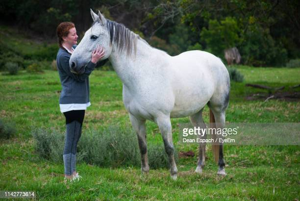 side view of young woman stroking horse while standing on grassy field - 家畜 ストックフォトと画像