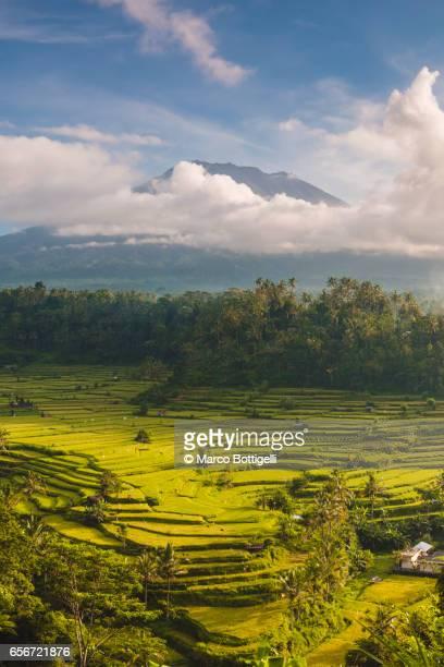 Sidemen valley, Rendang, Karangasem Regency, Bali, Indonesia.