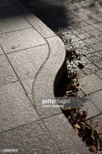 sidewalk and curb with leaves - joseph squillante stock pictures, royalty-free photos & images