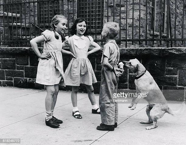 Sidewalk drama involving a wise old dog is called Who's Fooling Who by William Milnarik of Yonkers NY a supervisor in Alexander Smith Sons Carpet Co...