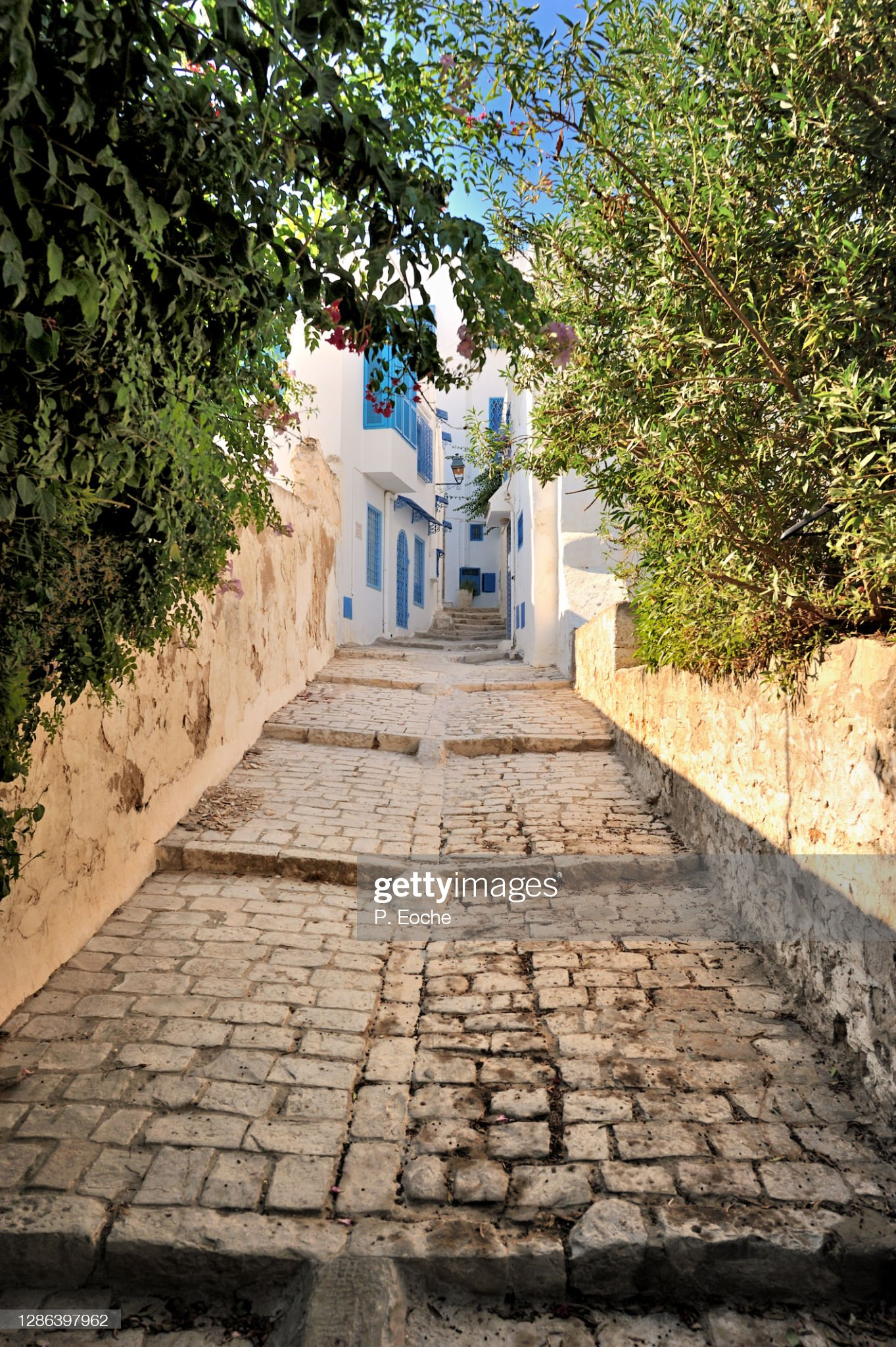 Sidi Bou Said, the hilltop town offers sloping streets. : Foto stock