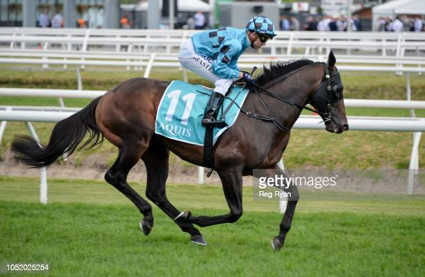 Siege of Quebec ridden by Stephen Baster heads to the barriers before the Aquis Toorak Handicap at Caulfield Racecourse on October 13 2018 in...