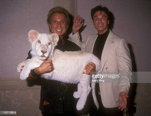 Siegfried and Roy with White Lion cub during Siegfried and Roy and White Lion Backstage Shoot at The Mirage Hotel in Las Vegas Nevada United States