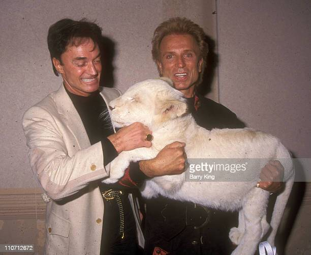 Siegfried and Roy with White Lion during Siegfried and Roy and White Lion Backstage Shoot at The Mirage Hotel in Las Vegas Nevada United States