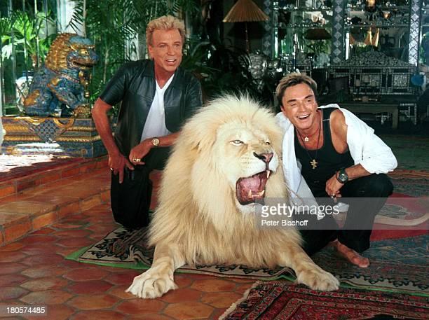 Siegfried Roy Homestory Dschungel Palast Las Vegas/Nevada/USA Garten Löwe weisser Löwe PNr383 Tier Künstlernamen Siegfried Fischbacher Roy Uwe Ludwig...