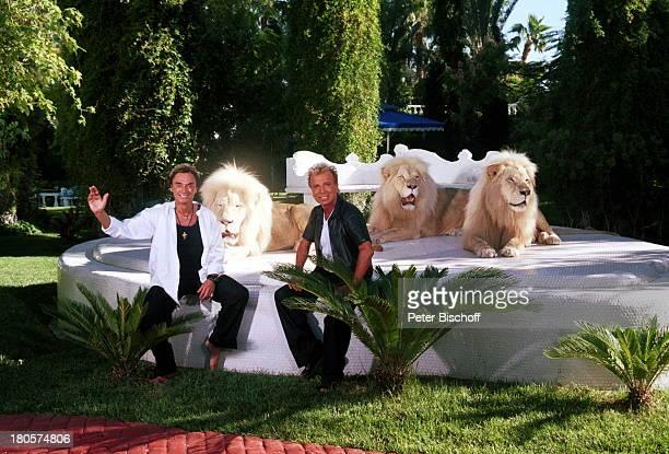 Siegfried Roy weiße Löwen Homestory DschungelPalast Las Vegas/Nevada/USA Palmen Podest Rasen Garten