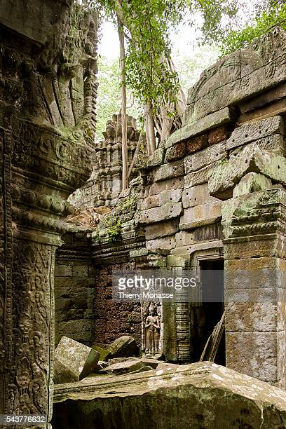 Siem Reap Kingdom of Cambodia August 12 2006 Ta Prohm temple built in the late 12th and early 13th centuries and originally called Rajavihara It was...