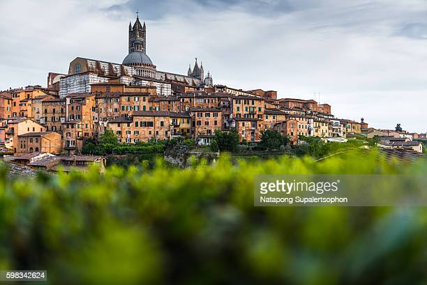 Siena Cathedral and historic centre